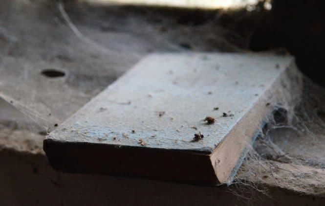 Comment Eliminer La Poussiere Dans Une Maison comment éliminer la poussière sur son lieu de travail