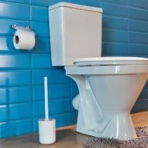 nettoyer-toilette