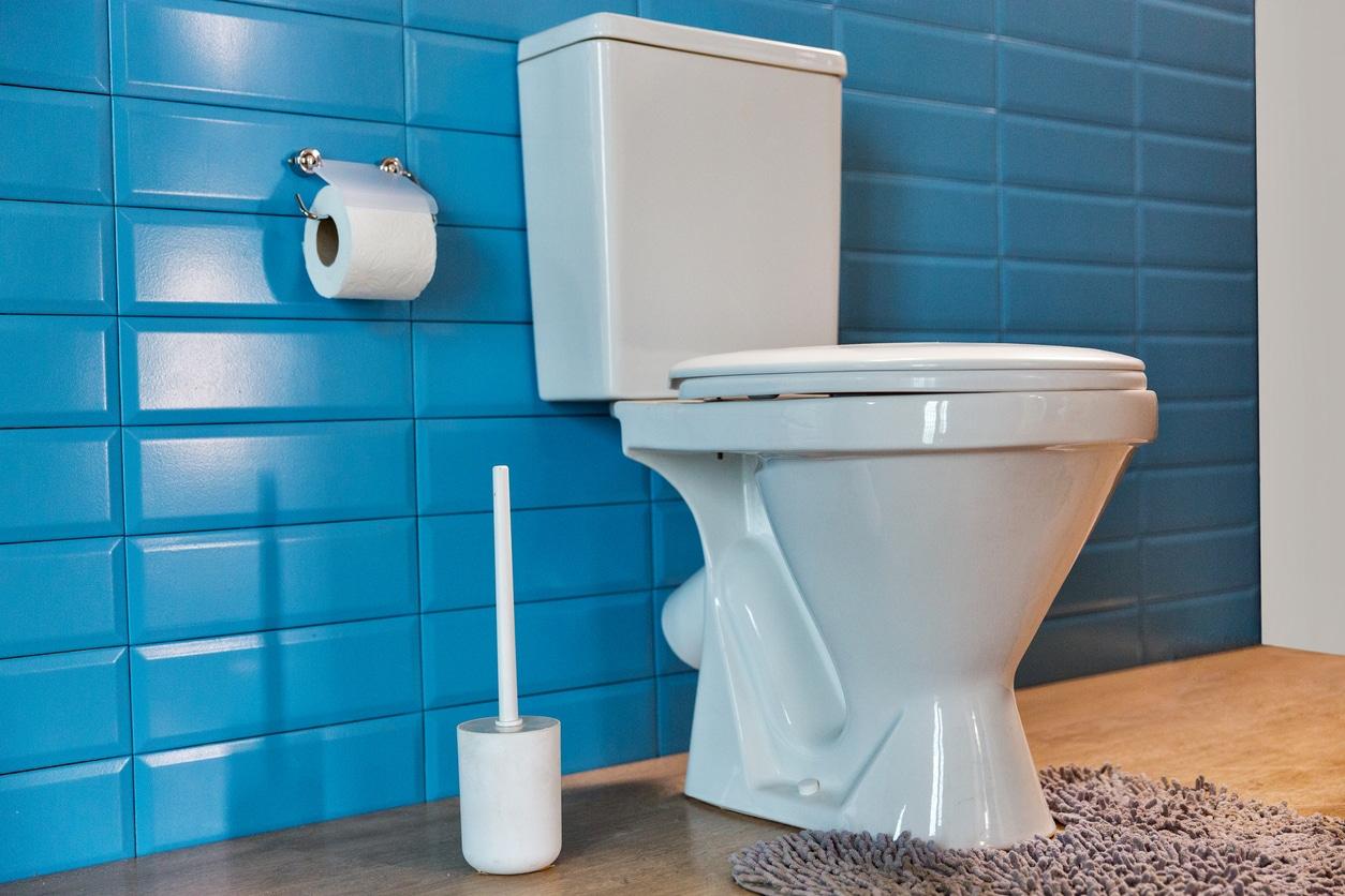 Nettoyer Lunette Toilettes Vinaigre Blanc comment nettoyer efficacement ses toilettes ?